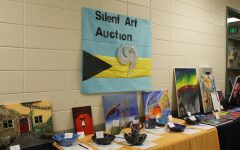 Silent Art Auction for the Bahamas