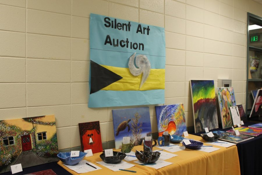 Silent Art Auction for the Bahamas